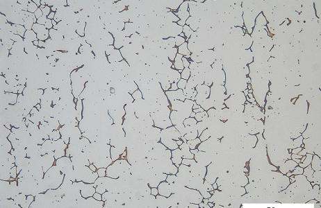 esame-micrografico-per-la-determinazione-della-ferrite-delta-in-acciaio-inossidabile-austenitico