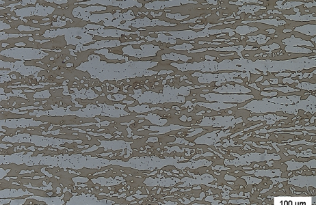 esame-micrografico-su-laminato-in-acciaio-inox-austeno-ferritico
