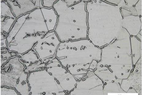 Attività di laboratorio effettuate su tubazioni saldate in acciaio inossidabile relative ad impianto di raffreddamento acqua mare occorso in avaria